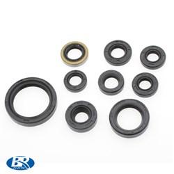 Kit Retentor De Motor Crf 250 10/13 Br Parts