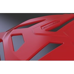 Protetor Tampa Do Motor Crf 250F Anker Cinza